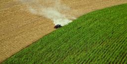 Meeting the Challenges of a Globalized Food Supply