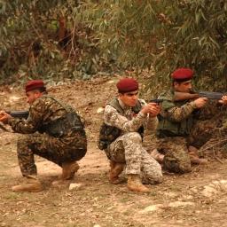US Aid to Kurdish Peshmerga – A Double-Edged Sword
